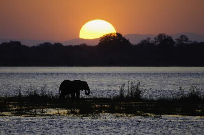 image_11_wilderness_safaris